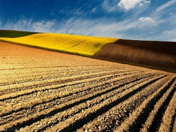 """Земеделските стопани могат да проверят дали заявените от тях земи попадат изцяло или частично в допустимия за подпомагане слой """"Площи в добро земеделско състояние"""" за 2013 г."""