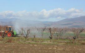 Чрез въвеждането на определението АКТИВЕН ФЕРМЕР в ОСП 2015 - 2020 се цели отпускане на директните плащания на действителните земеделски