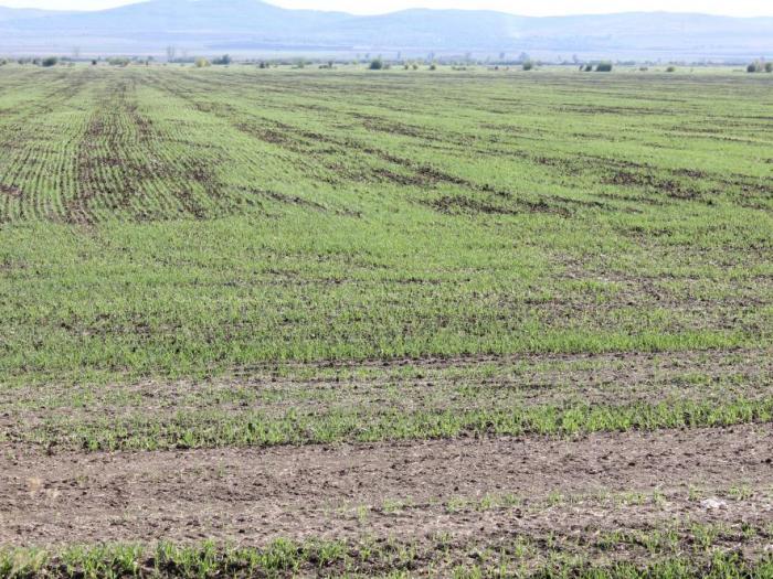 Това ще позволи да се покрият до 90% от земеделските площи в страната