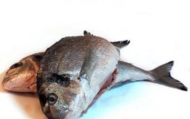 Рибарските селища във Варна няма да се бутат