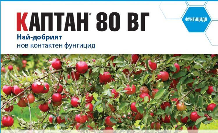 Каптан 80 ВГ