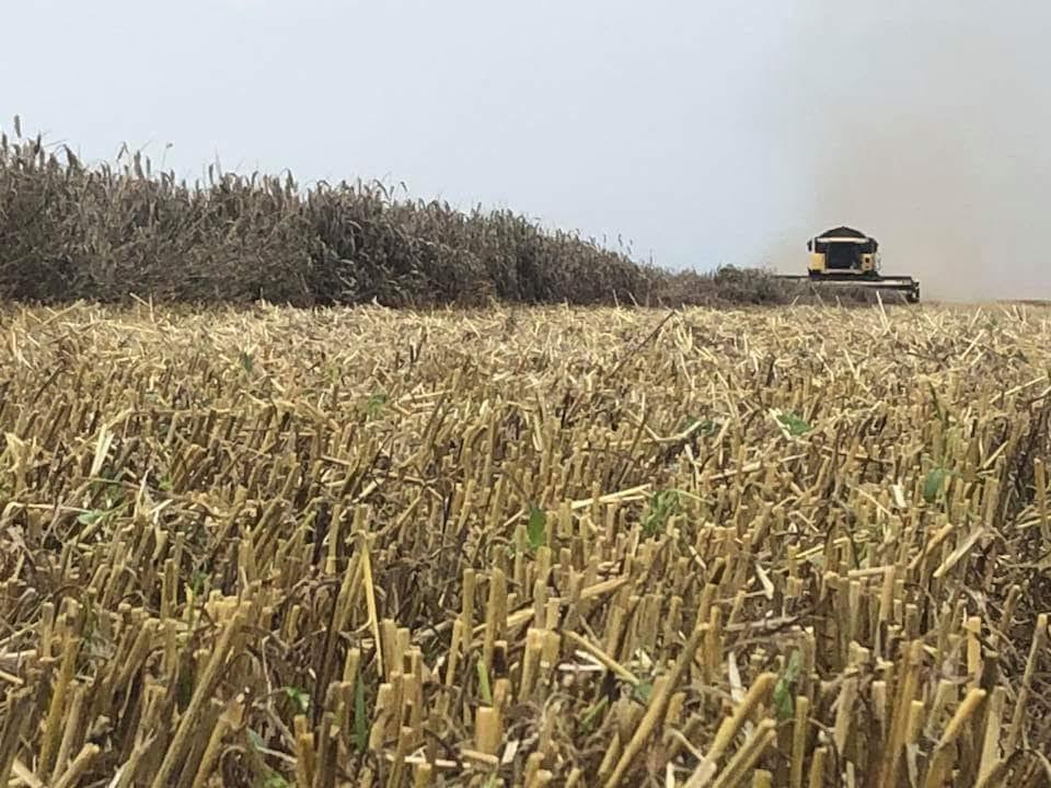 Промени в закона за горивата облекчават фермерите