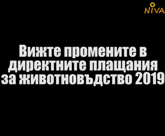 Симеон Кузманов от МЗХГ за промените в директните плащания в сектор животновъдство