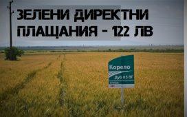 122,84 лева на хектар e ставката на зелените директни плащания за Кампания 2018