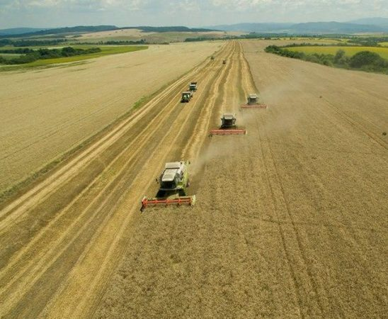 Търговци на зърно