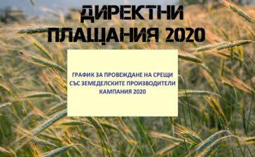 Директни плащания 2020
